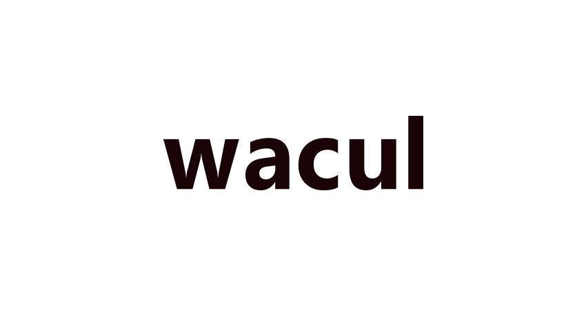 東京大学松尾研究室と人工知能ベンチャーWACULが共同研究