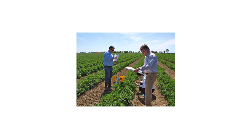 NEC、農業ICTソリューションのグローバル展開を強化
