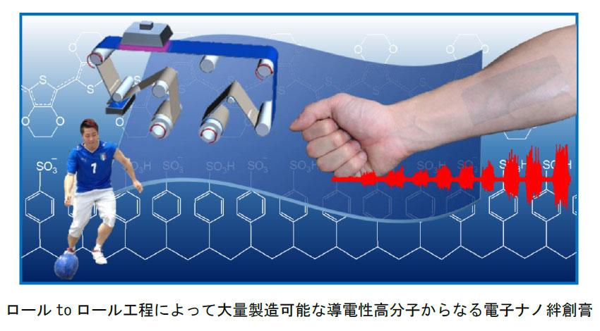 早大、筋肉の活動を計測する電子ナノ絆創膏を開発