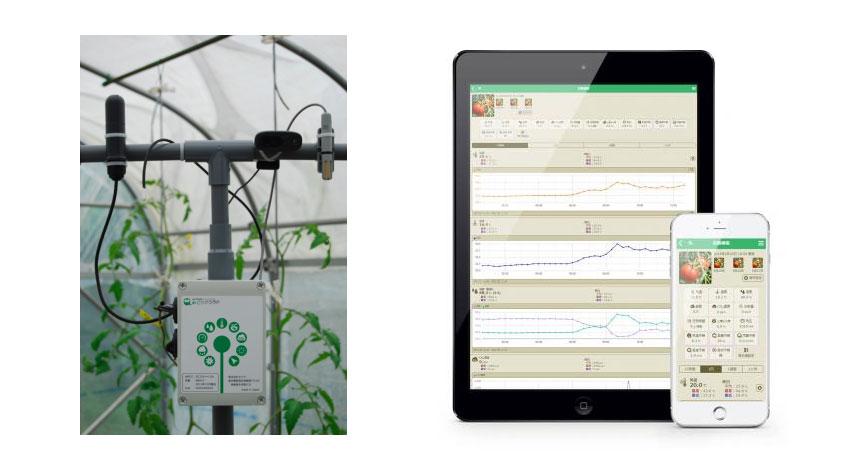 温室内環境遠隔モニタリングサービス「みどりクラウド」のセラク、長崎県南島原市に、新たに農業IT研究開発拠点を開設