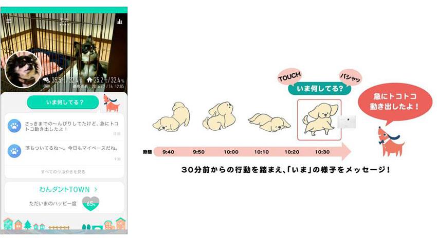富士通、愛犬見守りサービス「わんダント2」を提供開始