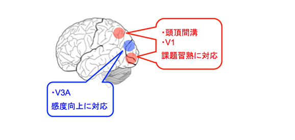 ImPACTプログラム図3