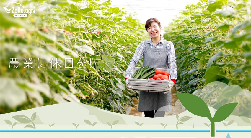 ルートレック・ネットワークスの次世代養液土耕システム「ゼロアグリ」、イチゴ施設土耕栽培で成果