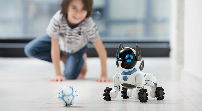 DMM.com、ペットロボット「CHiP(チップ)」販売開始