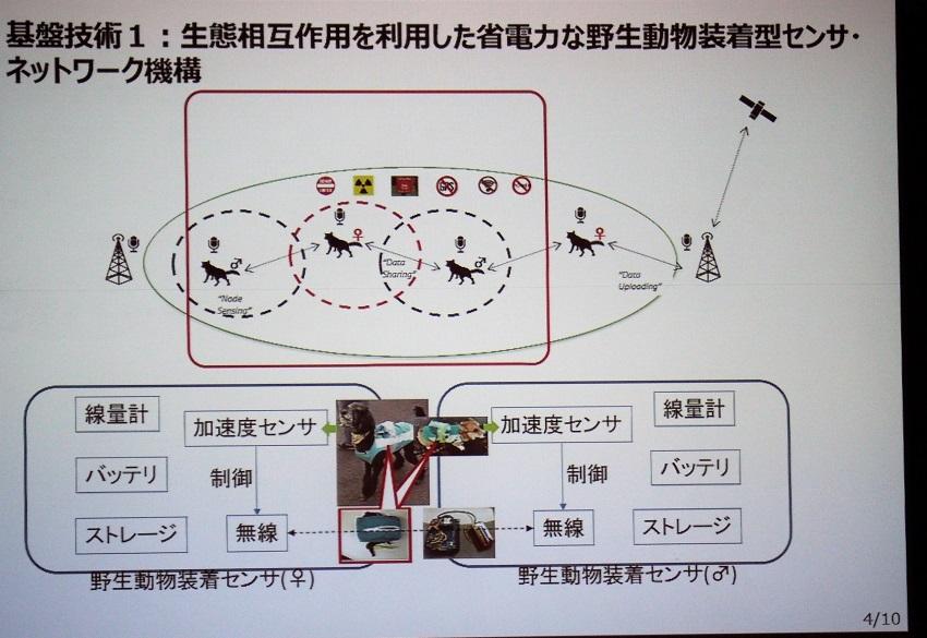 IOTAL_KOBAYASHI_network