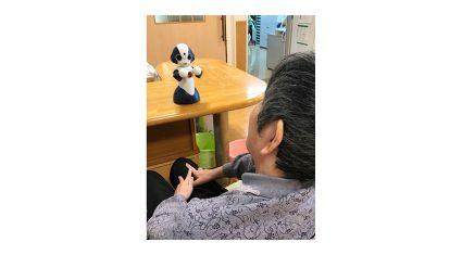 NTTデータと住環境研究所、在宅高齢者向けコミュニケーションロボット「Sota」の実証実験を開始