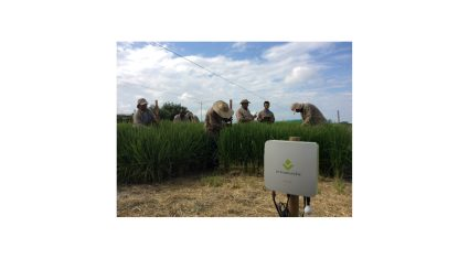 PSソリューションズとCIAT、コロンビアで農業IoTソリューション「e-kakashi」の実証実験を開始