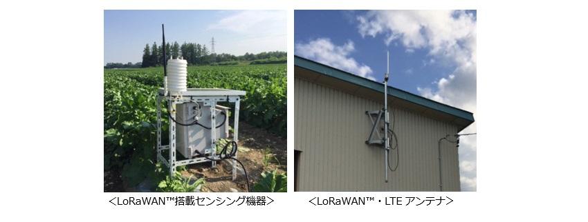 IoTNEWS_帯広でIoTを活用した農業効率化の実証実験を開始KDDI03