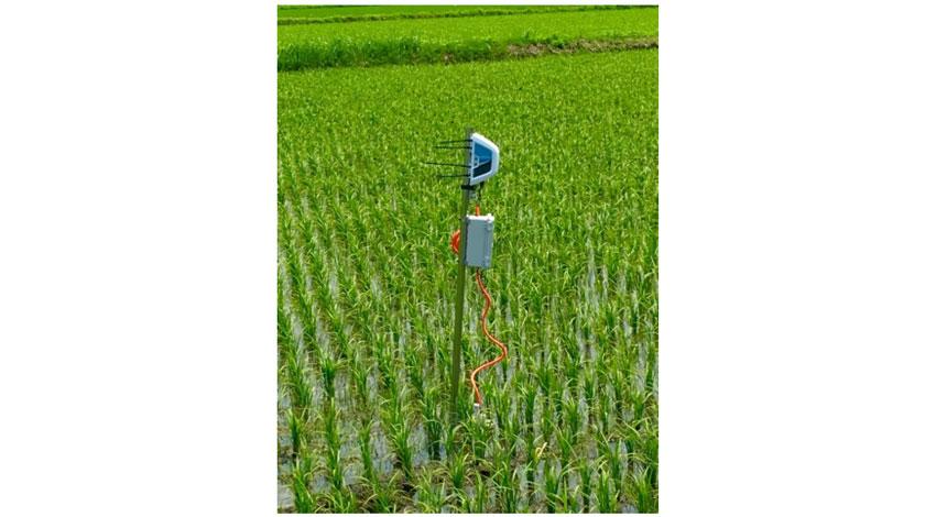 ISID、農業IoT事業のベジタリアに出資