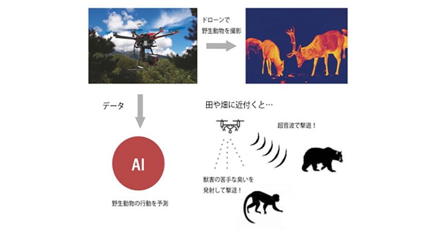 産業用ドローンのスカイロボット、害獣対策に赤外線サーモグラフィーカメラ搭載の「SKY ANIMALS」を発売