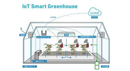 ヤンマー、AI/IoTを活用した次世代施設園芸システムの確立に向けたテストベッドの運用を開始