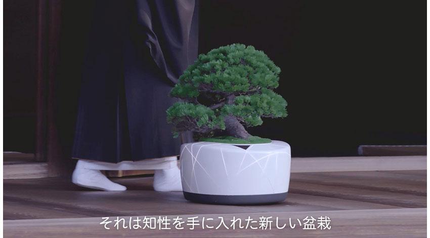盆栽 x テクノロジー、TDKが「BonsAI(ボンスエーアイ)」を公開