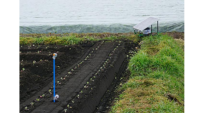 エイムネクスト、宮崎・高鍋町でIoTを活用したインフラ構築の取り組みを開始