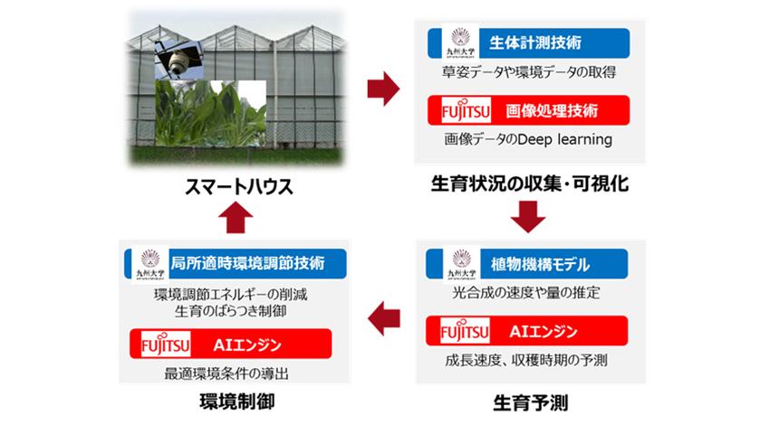 九州大学と富士通、AIを活用した農業生産の共同研究を開始