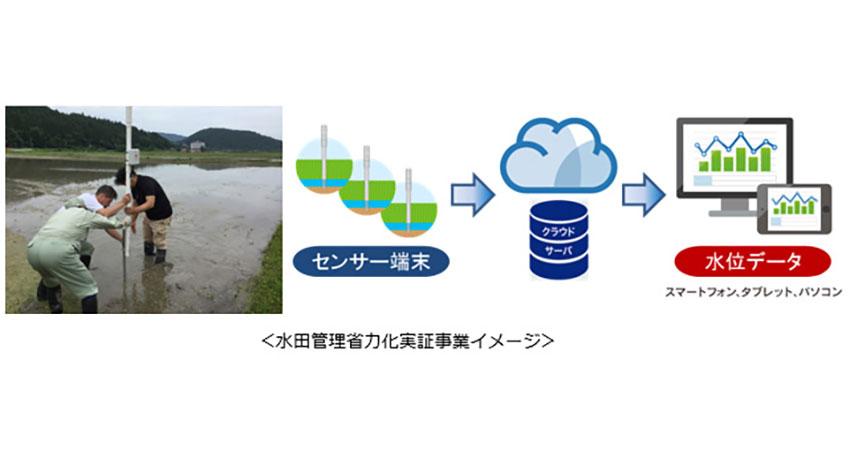 KDDI、「豊岡市スマート農業プロジェクト」を開始