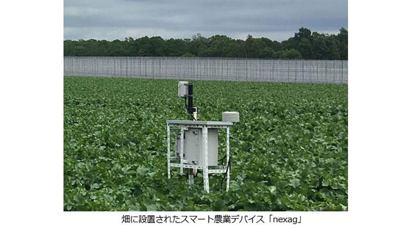 システムデザイン開発のスマート農業サービス「nexag」がBIGLOBEモバイルを採用