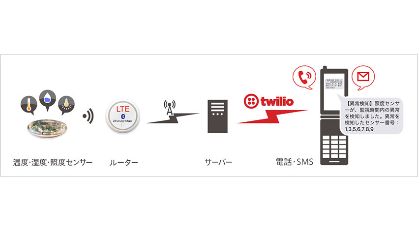 農業×IoT、沖縄県糸満市でKDDIウェブコミュニケーションズが実証実験