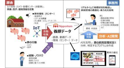 日本ハム・NTTデータ等4社、AIで豚の健康や発情兆候を判定する「スマート養豚プロジェクト」開始