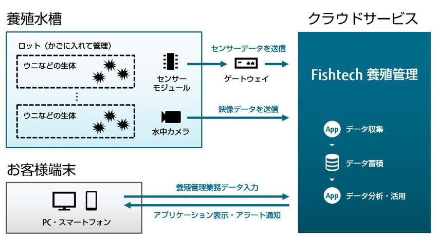 富士通など、IoTを活用したウニ・ナマコ陸上養殖の実証実験を北海道神恵内村で開始