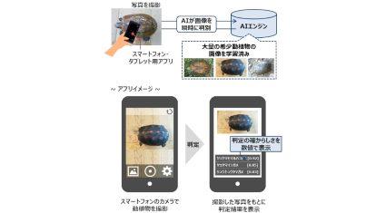 環境省とドコモ、画像認識AIを活用した希少野生動植物の密猟・密輸対策に向けた実証実験を開始