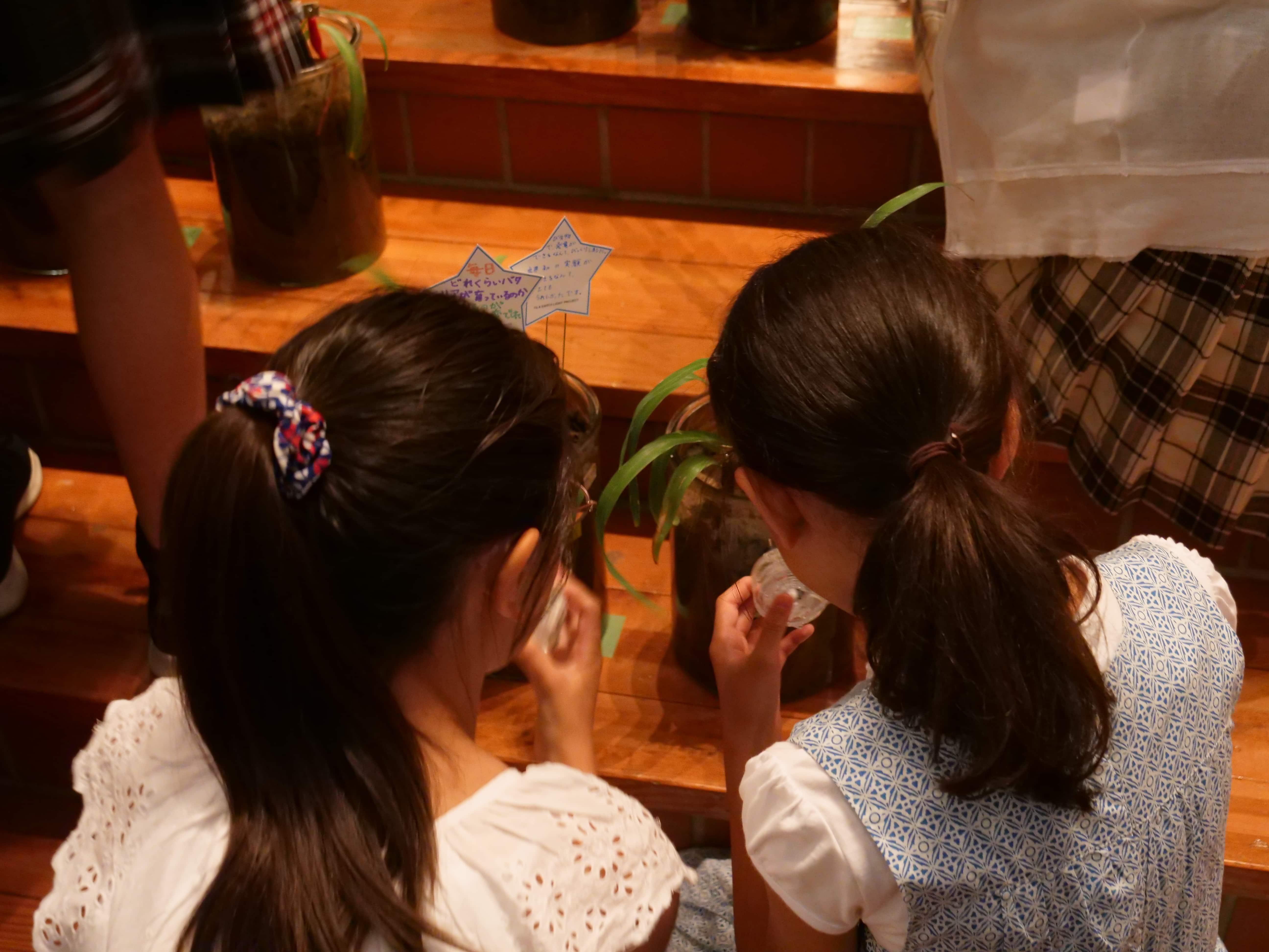 sensingnetの微生物発電技術を小学校のSTEAM教材として採用 -立教女子小学校