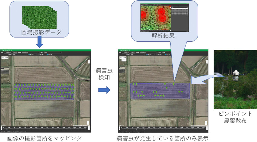 オプティム、兵庫県丹波地域でAIやドローン活用のスマート農業による特産物の生産力強化