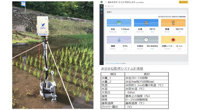 KCME・東京電機大学・小谷村、Sigfox活用した農業IoTで「おたりスマートソンプロジェクト」を始動