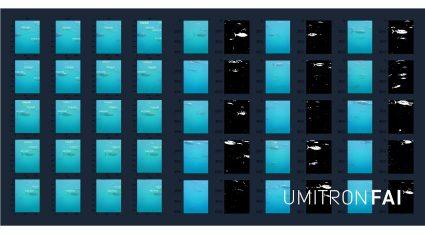 ウミトロン、機械学習を活用した海上自律型の魚群食欲解析システム「UMITRON FAI」を開発