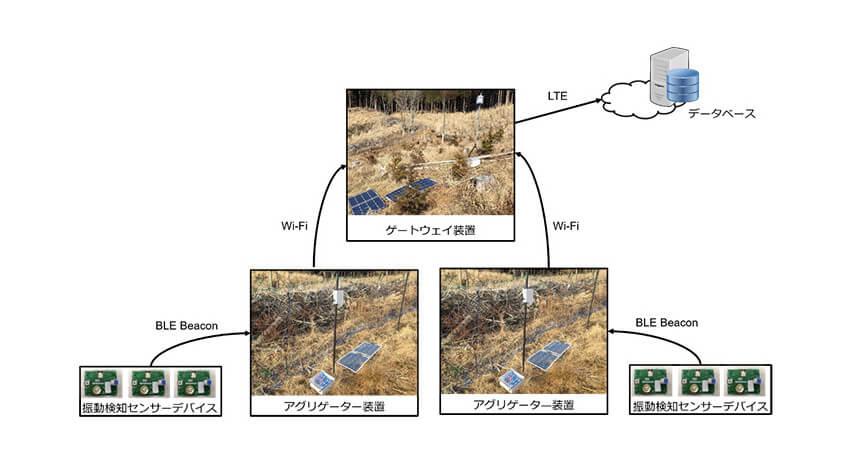 常葉大学・国土緑化推進機構・KDDIなど、IoTを活用した森林管理効率化に関する実証実験を開始