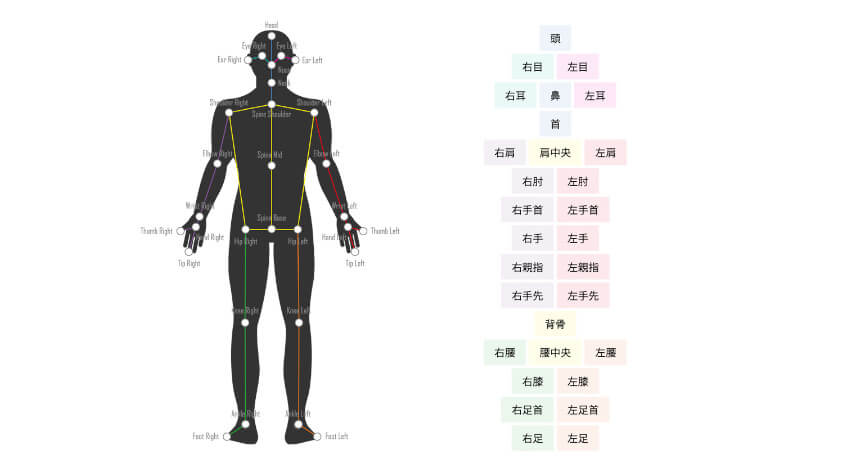 ネクストシステム、カメラ1つで人間の骨格を3D解析するAI骨格検出システム「VisionPose Single3D」を発売