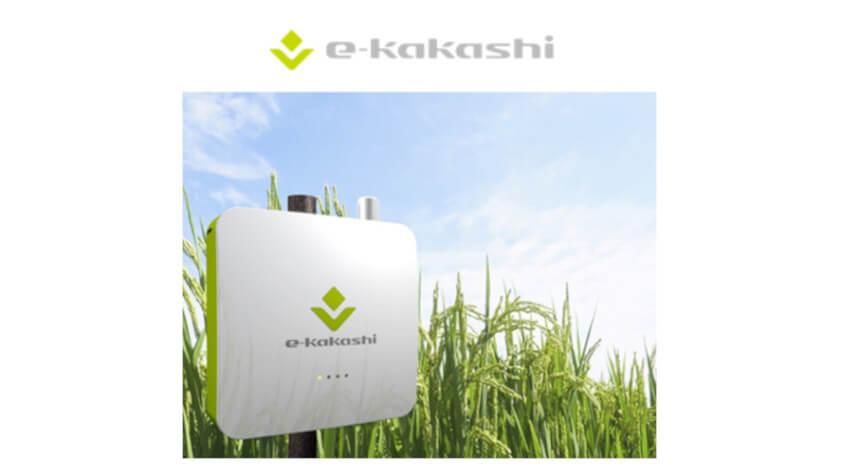 ソフトバンク、コロンビア共和国におけるコメ栽培の生産性向上への取り組みに農業AIブレーン「e-kakashi」を納入開始