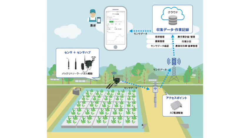 NTTドコモ、ZETA活用の営農支援プラットフォーム「畑アシスト」を提供開始