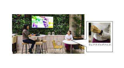 NECと大和リース、快適な職場環境づくりに向けて感情分析と緑のオフィス空間による実証実験を開始