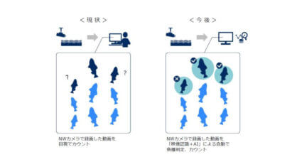 NECと水資源機構、AIでアユの遡上数を自動計測するシステムの実証を実施