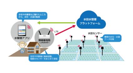 IIJの水田水管理プラットフォーム