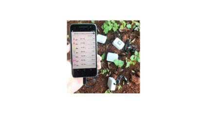 神戸デジタル・ラボ、Momoの農業IoTキットを活用したシステム開発を開始