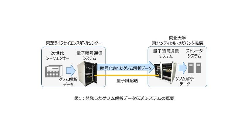 東芝とToMMo、量子暗号通信技術を活用して全ゲノム配列データの効率的な伝送を実現
