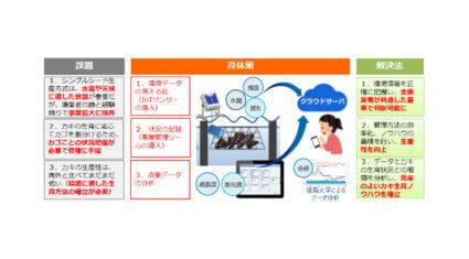 KDDIなど、IoT活用のカキ養殖事業を徳島県海陽町で開始
