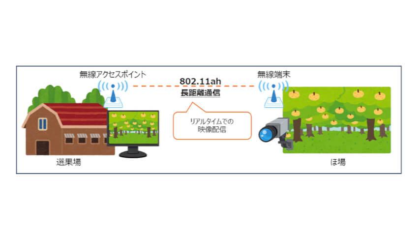 NTT西日本など、IoT向けWi-Fi規格「IEEE802.11ah」を用いた農業フィールドトライアルを実施