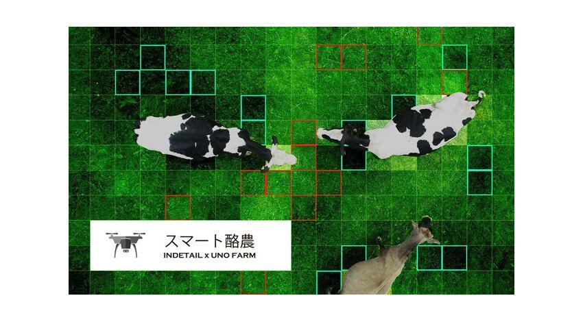 INDETAILと宇野牧場、ドローンとAIを活用した「スマート酪農」の実証実験を開始