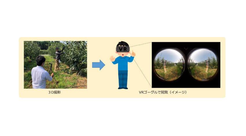 ドコモ、スマートグラスを活用した農業遠隔指導の実証実験を開始