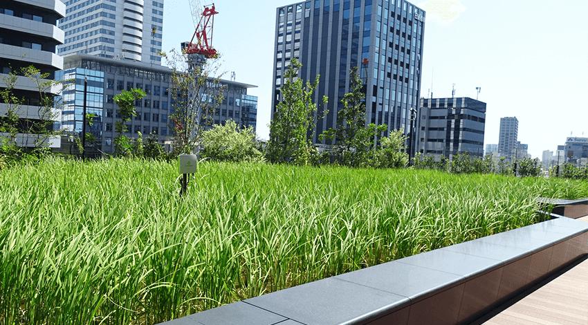 東急不動産とソフトバンク、テクノロジーでリアルの場を守る「東京ポートシティ竹芝」開業