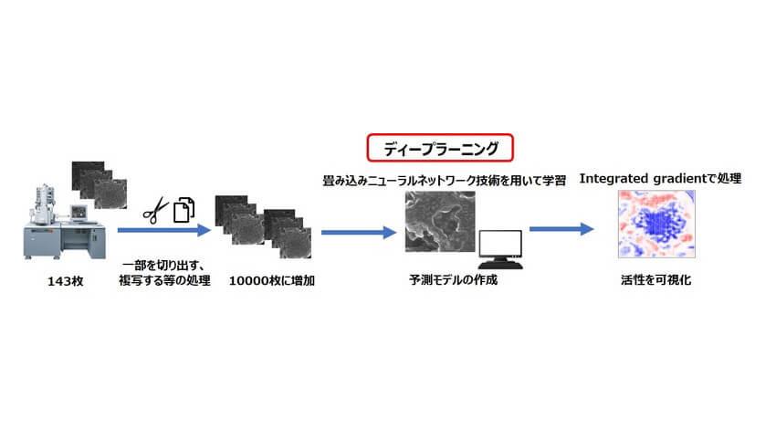 花王と奈良先端科学技術大学院大学、ディープラーニング技術を用いた新素材開発手法を開発