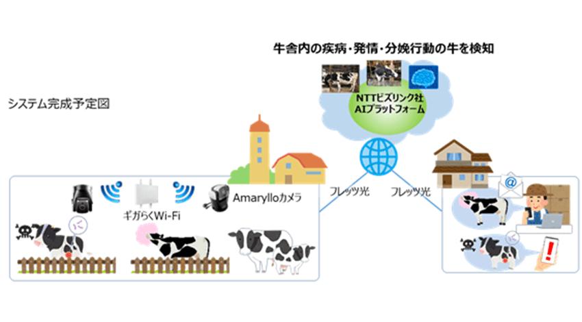 NTT東日本・NTTビズリンクなど、映像データを活用した牛の健康管理に関するAI動画像解析の実証実験を開始