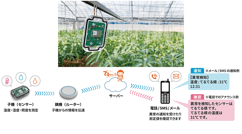 KDDIウェブコミュニケーションズ、畑の温湿度や照度の異常を検知し農業生産者へ通知する農業IoT「てるちゃん」をリリース