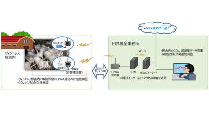 臼井農産とNTT東日本、IoTセンサーを活用したCO2濃度と豚飼育状況の相関に関する実証実験を発表