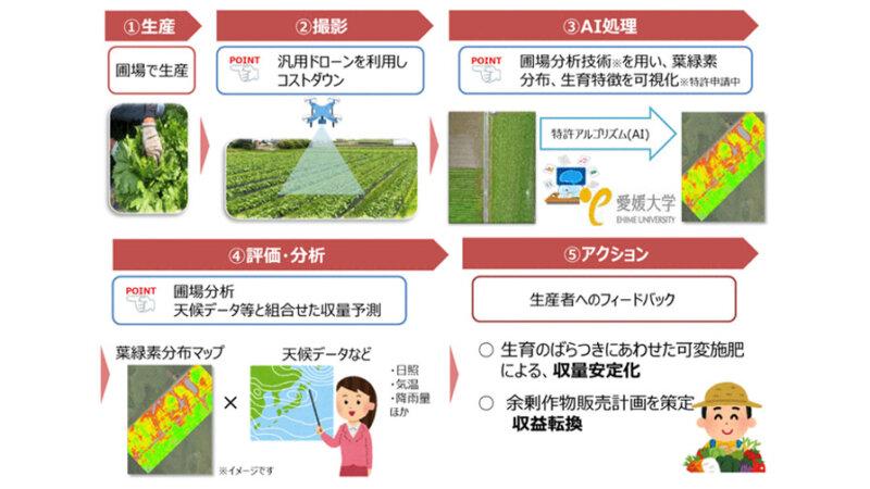 NTT西日本グループ・愛媛大学・青空、ドローン・AIなどを活用した農作物生産コントロールの共同実証実験を開始