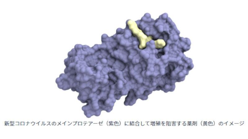 PFNと京都薬科大学、医薬品開発の初期工程を高速化するAI創薬技術を開発