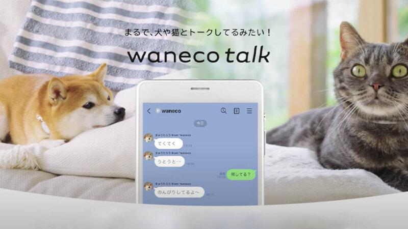 NEC、AIを活用してLINEで犬や猫とのトーク体験ができる「waneco talk」を先行予約販売開始