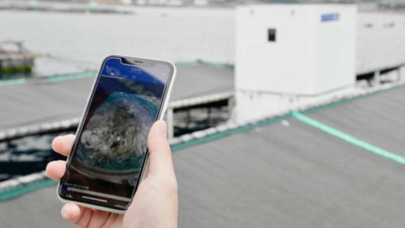 ウミトロンなど、AI搭載のスマート給餌機「UMITRON CELL」をくら寿司の養殖事業に導入開始